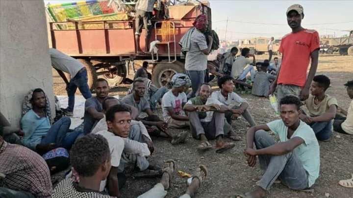 المفوضية السامية للأمم المتحدة لشؤون اللاجئين: إنقاذ 77 مهاجراً غير شرعي قبالة السواحلالليبية-