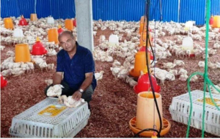 قطاع الزراعة الحيوانية: الحكومة تبدى موافقتها على دعم مزرعة عمرمحسن
